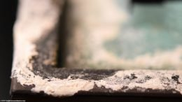 Mineral Buildup Around An Aquarium Rim
